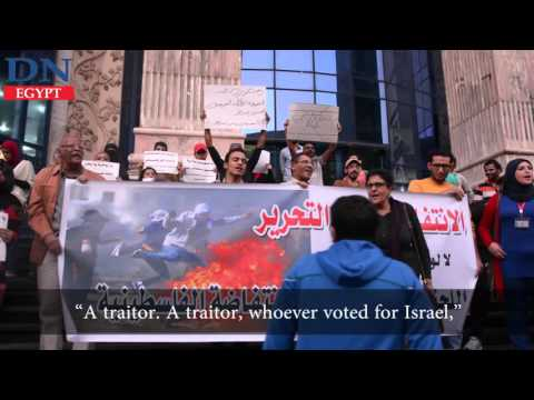 Activists protest Egypt's UN vote for Israel