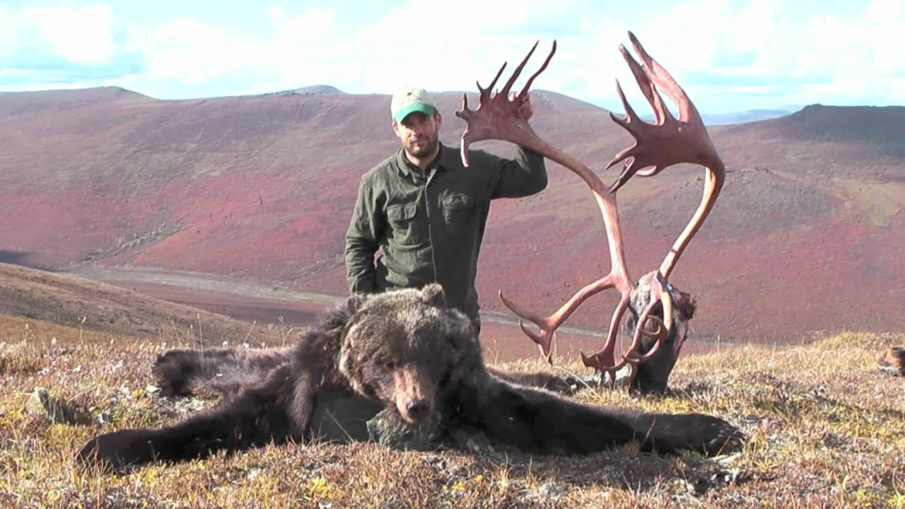 Alaska caribou hunting youtube for Alaska out of state fishing license