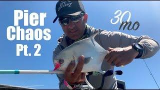 """Catch & Cook Pompano - """"PIER CHAOS"""" Pt#2 - Pensacola Beach Pier - Fishing Florida"""