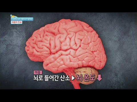 [Happyday] Yawn 'A signal from the brain' 하품, '뇌가 보내는 신호'!? [기분 좋은 날] 20160112