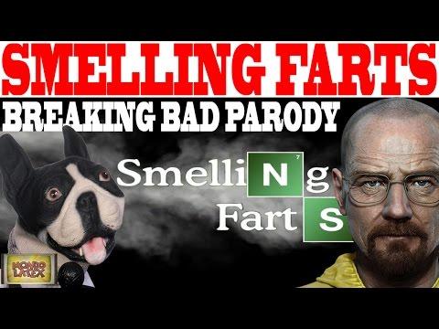 Is It Bad If Farts Smell Really Bad Uberhaxornova Spray