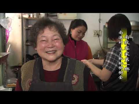 台灣-MIT台灣誌-EP 0717-南投客家第一鄉 南港村 三月枇杷樹樹金