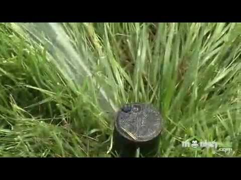 Garden Water Conservation