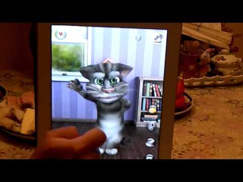Про говорящего кота speaking cat