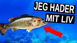 HVIS JEG VAR EN FISK!