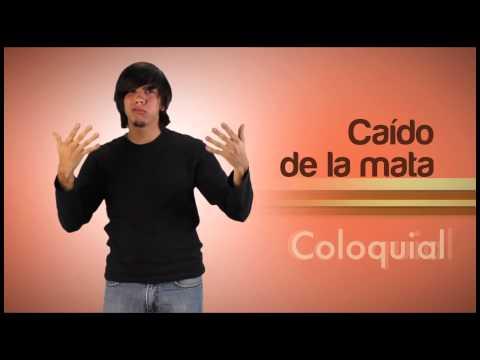 Módulo Lenguaje Coloquial del Video Diccionario de Lengua de Señas Venezolana Tomo 3