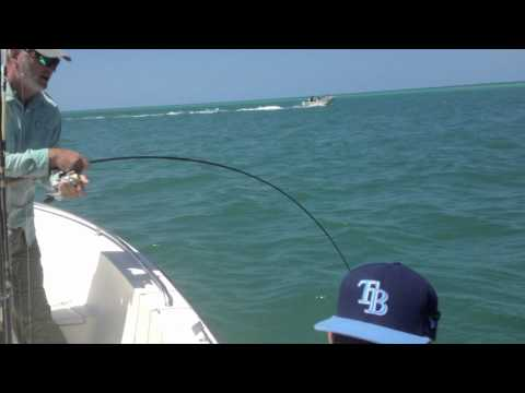 Tarpon Fishing Sarasota, Florida1080p.mov