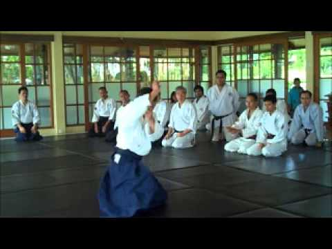 Institut Aikido Indonesia Special Training with Seiji Ido Sensei (Suginami Aikikai japan) Image 1