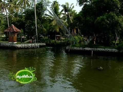 Prospects of Farm Tourism in Kerala