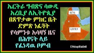 Eritrea, Egypt and Saudi Voted Against Ethiopia - Ethiopikalink