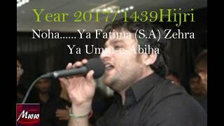 download lagu Shahid Baltistani 2017  Ya Fatima Zehra Ya Umm gratis