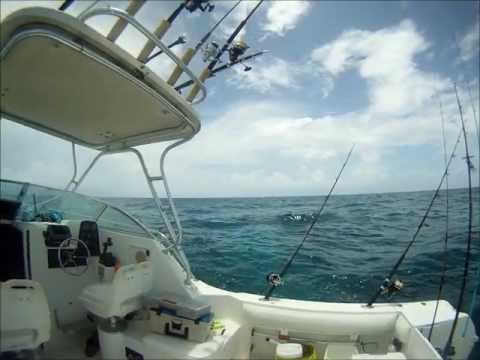 Sunday dive off Big Pine Key, Florida (June 2013)