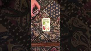 Sagittarius Soulmate Love Reading 2/17-2/24 You are their beacon and Evil comes your way!