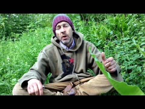 Woodland Survival Challenge UK. www.coastalsurvival.com