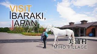 美浦-MIHO- VISIT IBARAKI,JAPAN