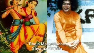 Bhaja Mana Radhe Shyama Gopala - Sai Krishna Bhajan (Students)