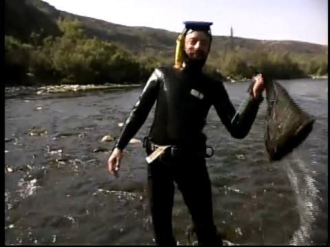 FRUTOS DEL PAÍS: Camaroneros del río Huasco