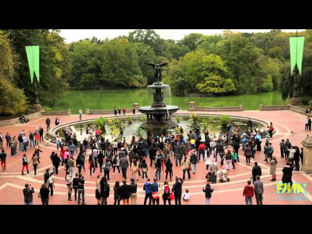 She Said Yes! Flash Mob - Central Park