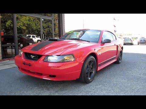 2004 Ford Mustang Mach 1 40th Anniversary Start Up, Exhaust, In Depth Tour, and Drive