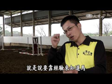 台灣-小人物大英雄-20150420 馬背上的波麗士