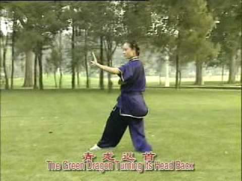 Bagua Training Program, Complete Form Part 2 Image 1