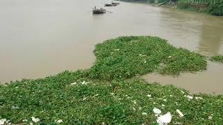 Save Ganga Save humankind