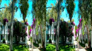 Samsung 3D TV Side by Side 3D Demo Video Bodrum.wmv
