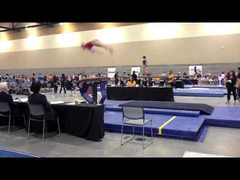 Shani Remme National Qualifier: 2013 Regional Vault Routine 9.000