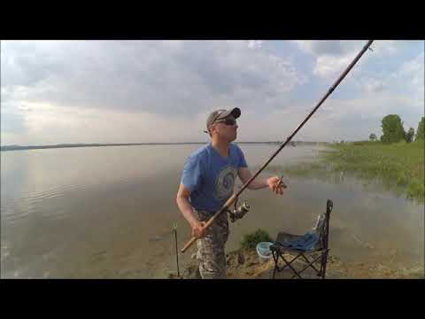 ловля карася на озере щелкун