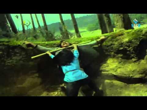 Puli Bebbuli Movie - Radhika Fight Scene