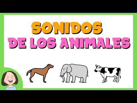 Los sonidos de los animales - Juego educativo para ni ños