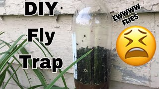 How to make a DIY fly trap