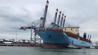 PLO - Tàu lớn nhất thế giới cập cảng Việt Nam