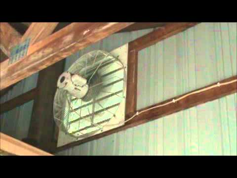 Large Dayton 24 Inch Louvered Exhaust Fan For Polebarn