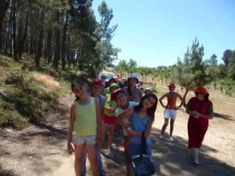 Projeto F�rias em Grande (Carrazedo de Montenegro) I Edi��o - Munic�pio de Valpa�os