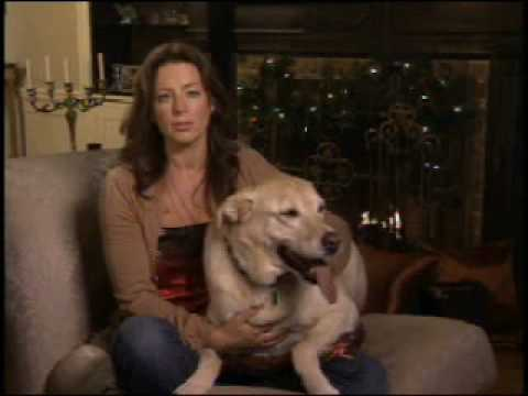 Sarah McLachlan Silent Night SPCA Commercial