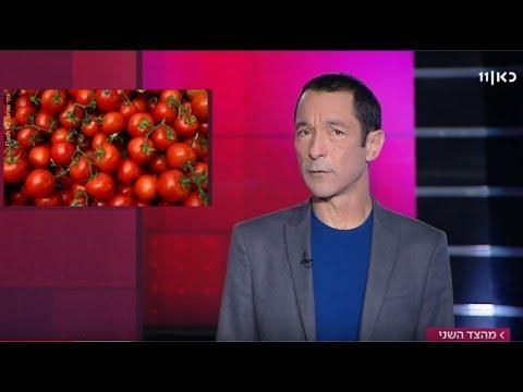 מי באמת המציא את עגבניית השרי? | מהצד השני עם גיא זהר -  12.3.2019