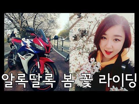 [모모TV] 혼자 잘노는 여성라이더 모모의 2016 봄꽃과 바이크 라이딩