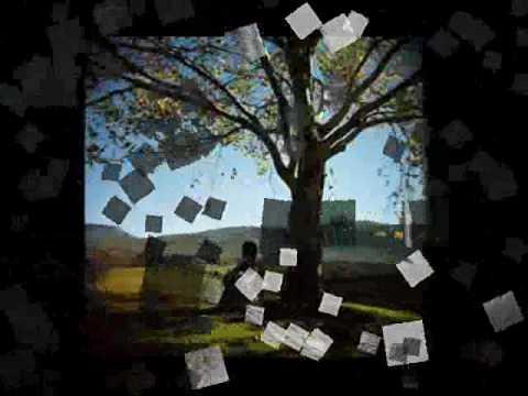 Cubra la imagen de la canción Papo De Maluco por Jhunior Villa