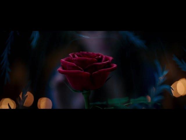 미녀와 야수 - 1차 공식 예고편 (한글자막)