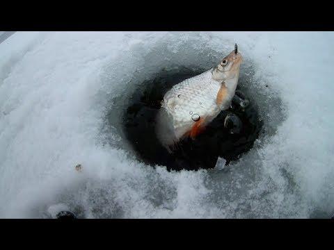 #19 Плотва в метель. Зимняя рыбалка 2017-2018 г.
