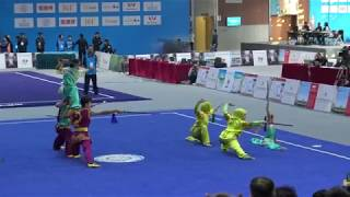 2017 World Traditiona Kung Fu - Team Turkey
