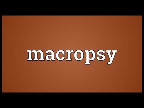 Header of macropsy