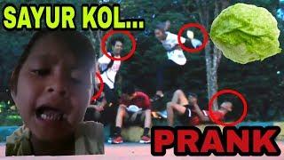 VIRAL!!! PRANK LAGU MAKAN DAGING 4NJ1*G DENGAN SAYUR KOL - Prank Indonesia