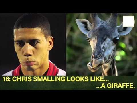 Football Players who look like ANIMALS