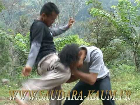 Trailer DVD Ciung Wanara, 100% Self Defence...