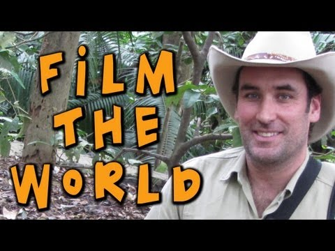 Digital Nomads – Travel Videos ...