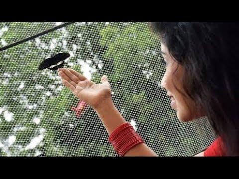 Projapoti Ei Mon_Shreya Ghoshal