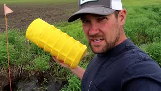 Minnesota Millennial Farmer Corrects Drainage Problem with Rapid Drain