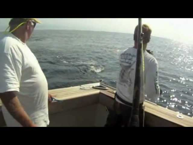 Little Audrey Game Fishing Charters - Blokes Chasing Black Marlin Take 2